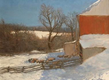 Paddock in Winter