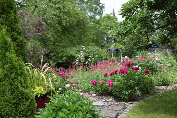 The pebble garden