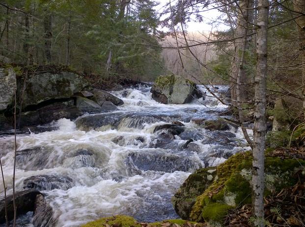 Magnetawan tributary - Edge of Algonquin