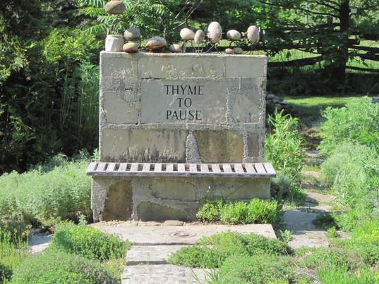 The thyme garden