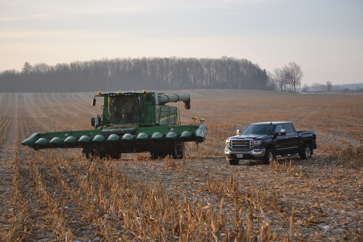 Harvesting corn - Carrick east farm.JPG