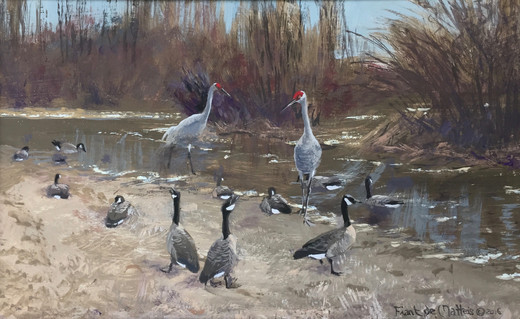Sandhill Cranes and Geese in Spring