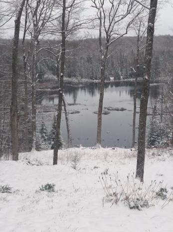 Cedar Pond