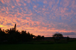 Sunset from the backyard