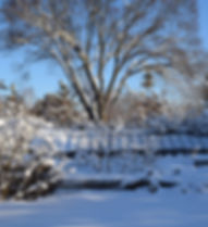 pitgreenhouse.jpg