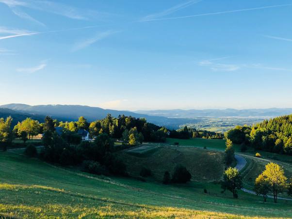 Tannenhof mit Blick in die Alpen