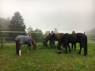 Gruppenfoto im Nebel