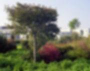 jardin en mouvement ens lyon gilles clement