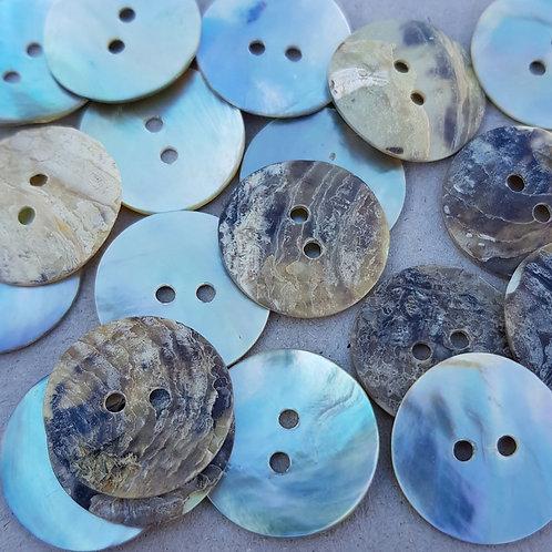 6 un botón Nacar Clásico de 10mm