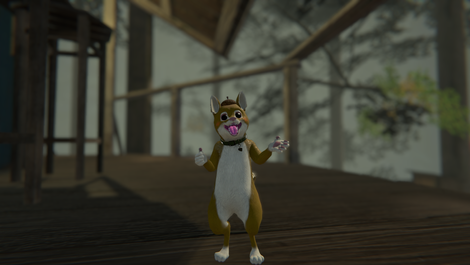 VRChat_1920x1080_2021-10-09_18-46-48.047.png