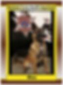 Max card 103019.jpg