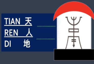 מבנה האדם ברפואה הסינית