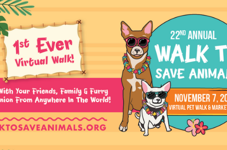 22nd Annual Walk to Save Animals
