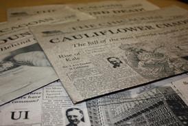 newspaper 3.jpg