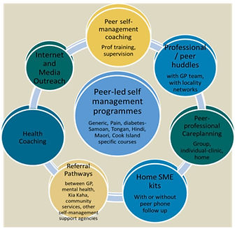 peer led self management programme.JPG