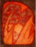 agave skyward 4x5