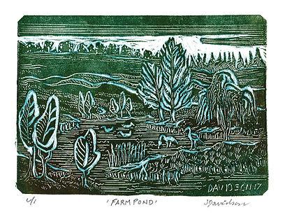 Farm Pond bluegr  3x4.5