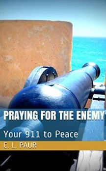 Praying for the Enemy book cover.JPG