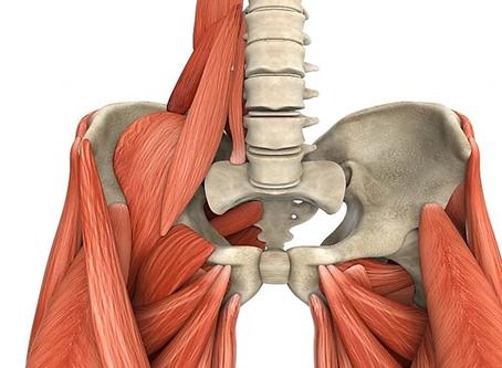 Conheça o músculo psoas