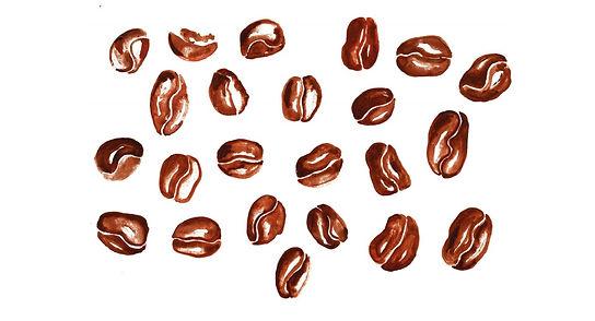Coffee bean illustration