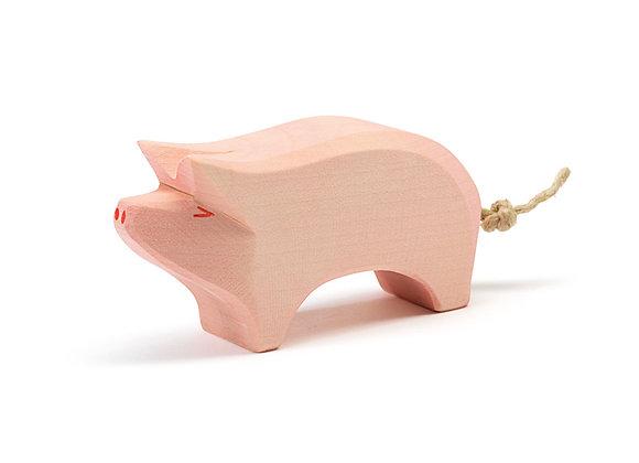 Pig Head High