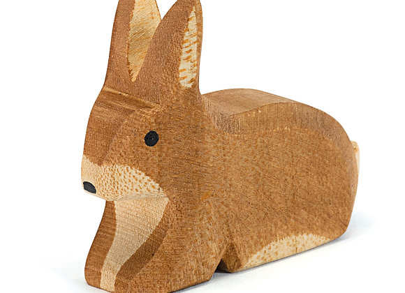 Spotted Rabbit Brown Sitting