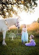 Unicorn Photo Shoot Pony Rides Brownsburg Indy