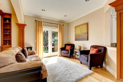 Area Rug in Living Room with Patio Door