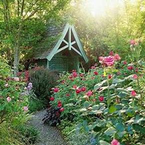 Ateliers création cottage garden février 2021