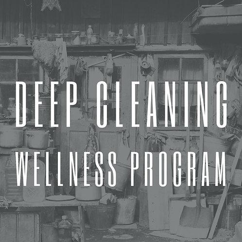 Deep Cleaning Wellness Program