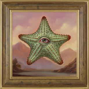 Starfish Reborn