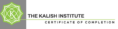 kalish institute certificate functional medicine