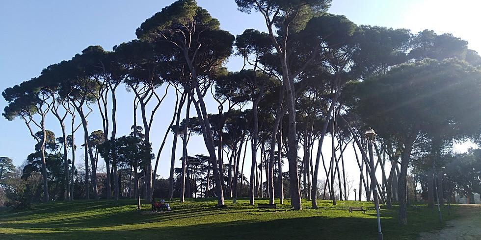 Passeggiata letteraria al tramonto a Villa Pamphili