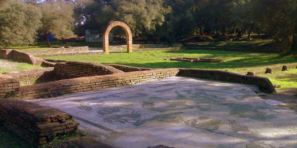 Trenotrek Pineta&Amatriciana&Antichi Romani a Castel Fusano