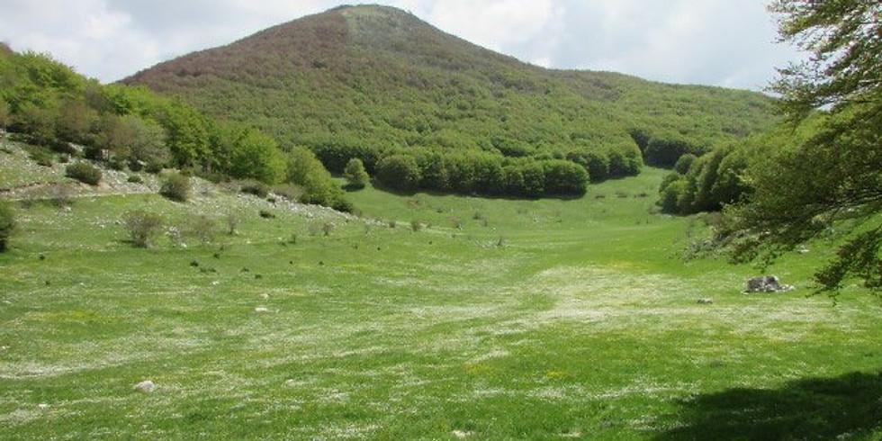 Monte Cima d'Arme di spiritualità e poesia