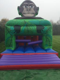 Monkey Fun Run