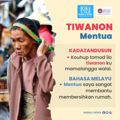 'Tiwanon' bermaksud 'mentua'