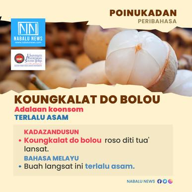 'Koungkalat do bolou' peribahasa Kadazandusun