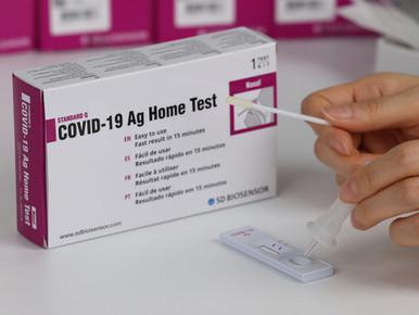 Consider subsidising Covid self-test kit, govt told