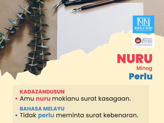 'NURU' DALAM BAHASA KADAZANDUSUN BERMAKSUD PERLU