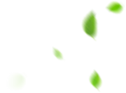 Smaller Leaves.png
