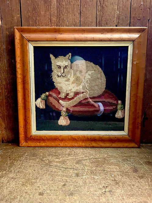 19th C Needlepoint of a Pet Cat on a Cushion in a Curly Maple Frame