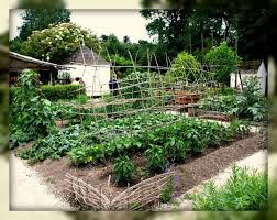 Gardening: The Settlers' Key to Survival!