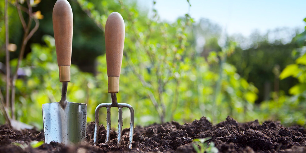 Planting Your Own Food Virtual Session