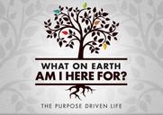 Purpose driven.jpg