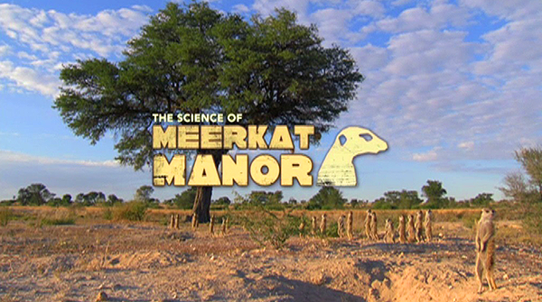 The Science of Meerkar Manor