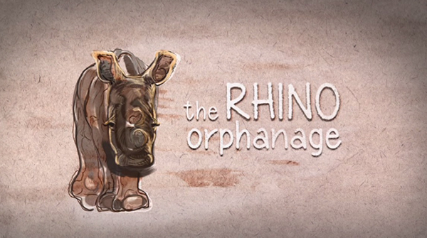 The Rhino Orphanage