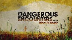 Dangerous Encounters_Brady Barr