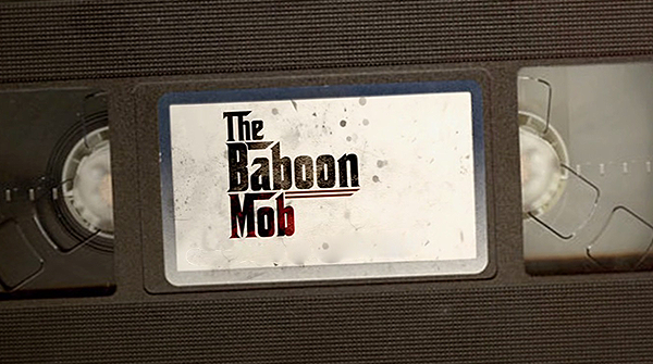 The Baboon Mob