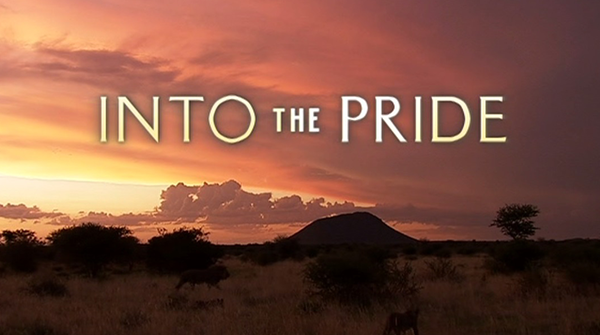 Into The Pride